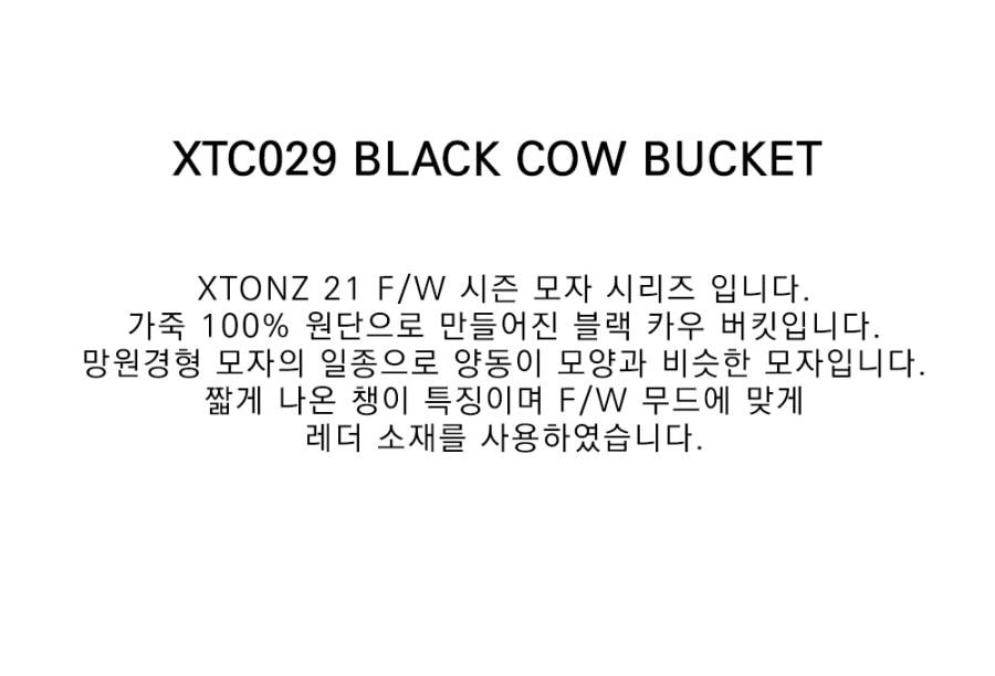 xtc029_3.jpg